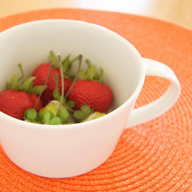 康創窯 藍土オリジナルスープカップ(白)
