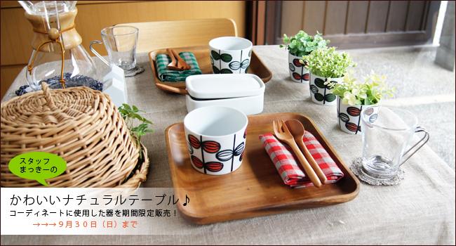 【和食器通販ショップ 藍土な休日】 スタッフまっきーのテーブルコーディネートのうつわ